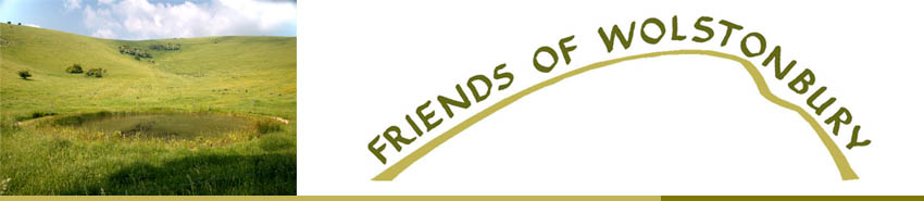 Friends of Wolstonbury logo